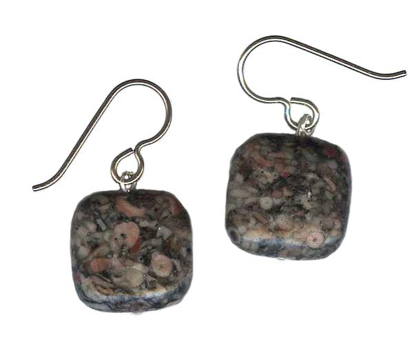 hypoallergenic Fossiliferous Jasper Earrings
