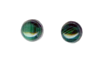 6mm malachite cab titanium post earrings